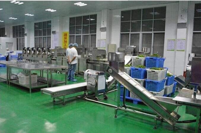 净菜加工生产线如何搭配更合理?迪凯方案欢迎大神指导图片