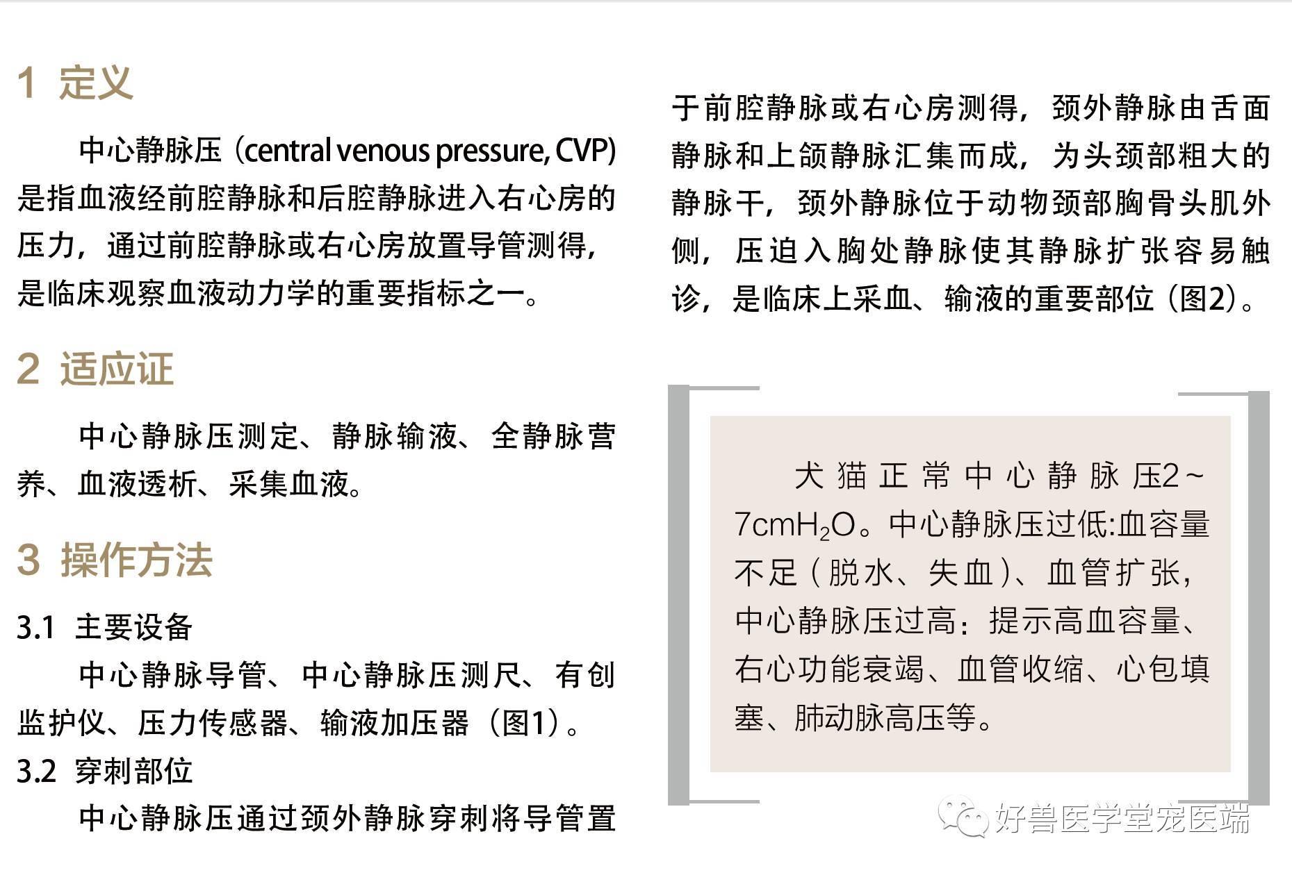 測定 方法 Cvp