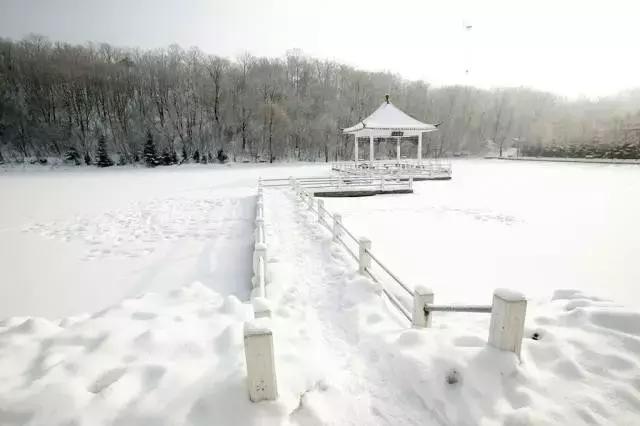 全国各省市雪景大比拼,神奇的九寨,被白雪衬托得更美