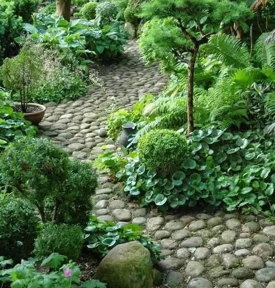如果你有个一楼的院子,这样做不仅漂亮还实用