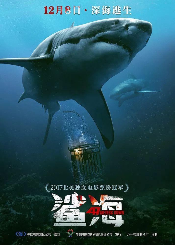 鲨血浴囹�a_娱乐 正文  鲨鱼受到的惊扰,张开血盆大口向游出铁笼的姐妹咬去,人和