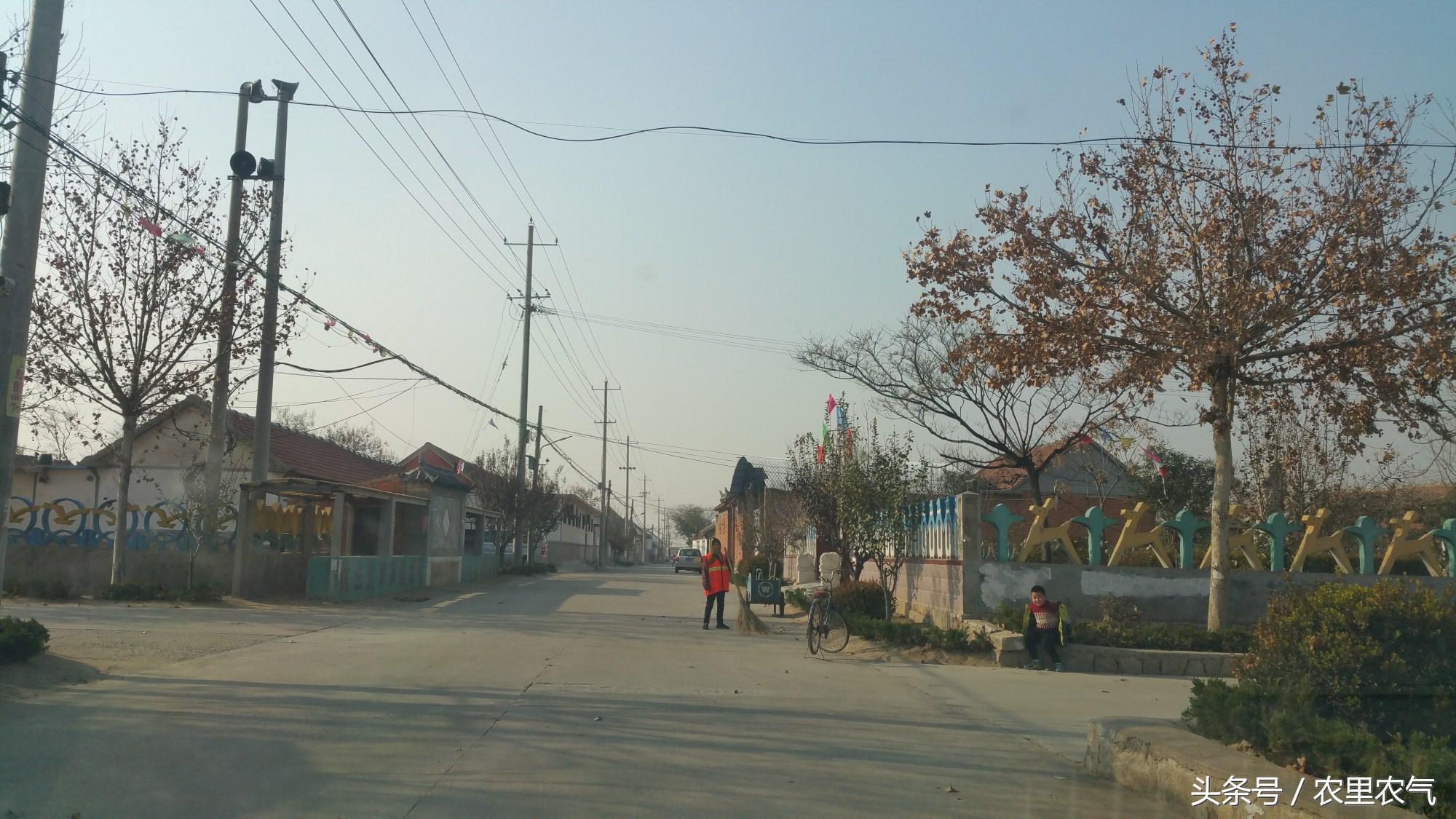 闯关东的亲戚回胶东农村,越看越疑惑 为啥看不到一个柴草堆