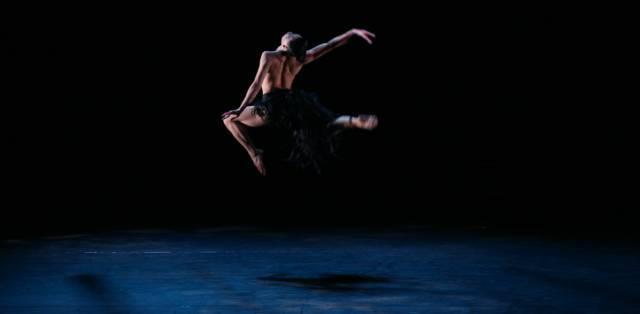 夜莺与玫瑰英文朗�_文化 正文  却是我从没见过的 力 与美的结合 芭蕾舞剧《夜莺与玫瑰》