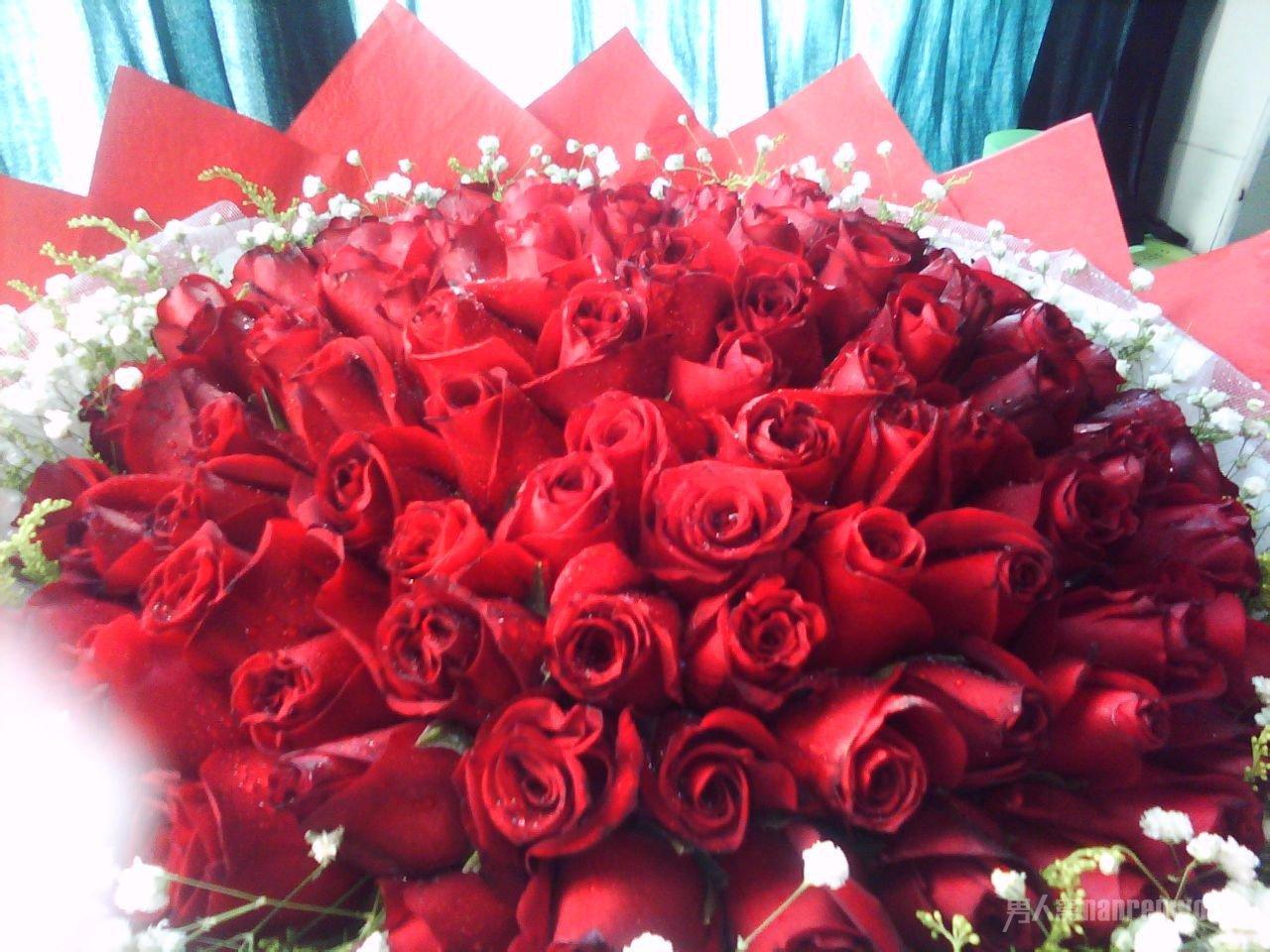 高档33朵红玫瑰花束