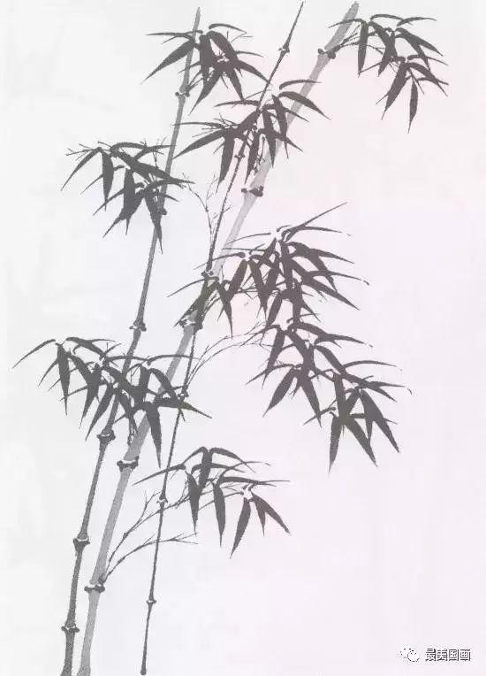 水墨竹子画法简单 图片合集图片
