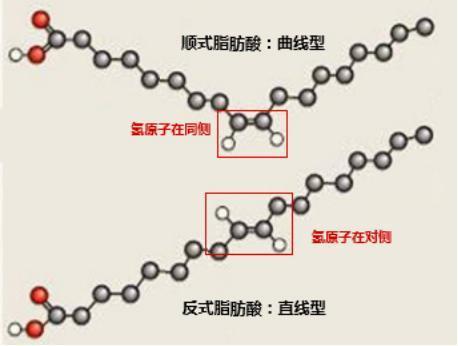 饱和脂肪酸,不饱和脂肪酸,反式脂肪酸到底该如何识别?图片