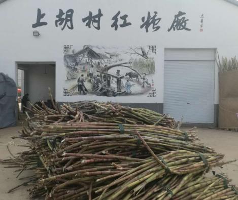 浙江义乌义亭镇上胡村扩增古法制糖保品质