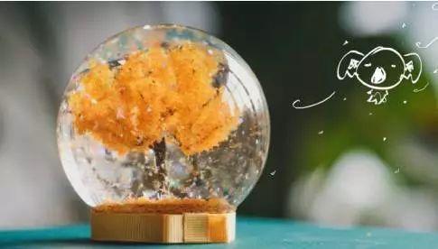 【diy活動】水晶落葉球,把秋天裝進玻璃球里圖片