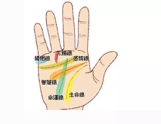 最简单的手_手部美容