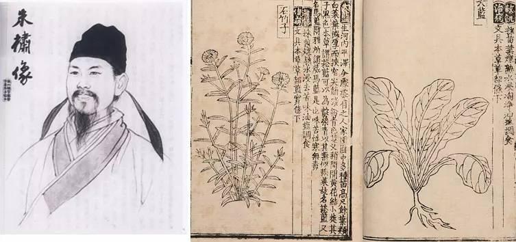 朱��所著的《救荒本草》是世界上第一本野菜学专著