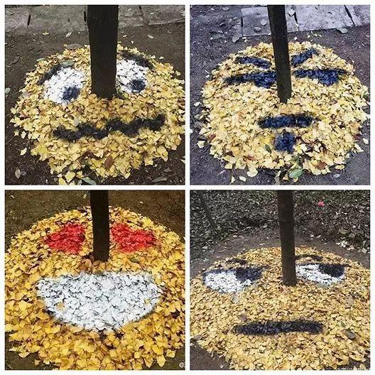 成都一高校学生制作银杏叶表情包!图片