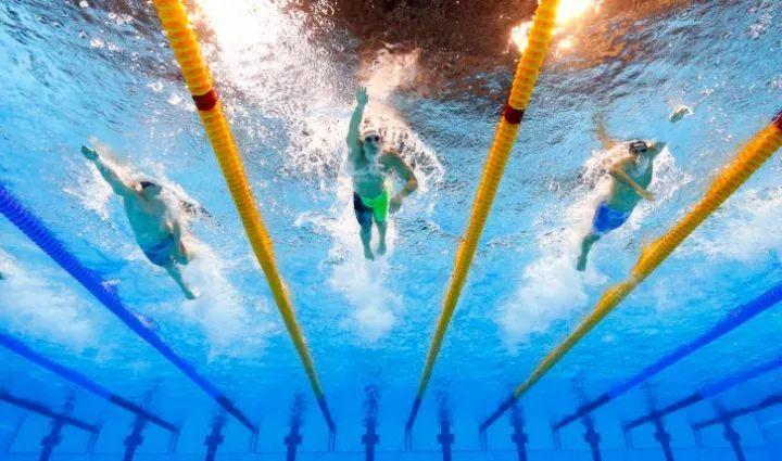游泳新手常犯的八个错误,你中枪几个?