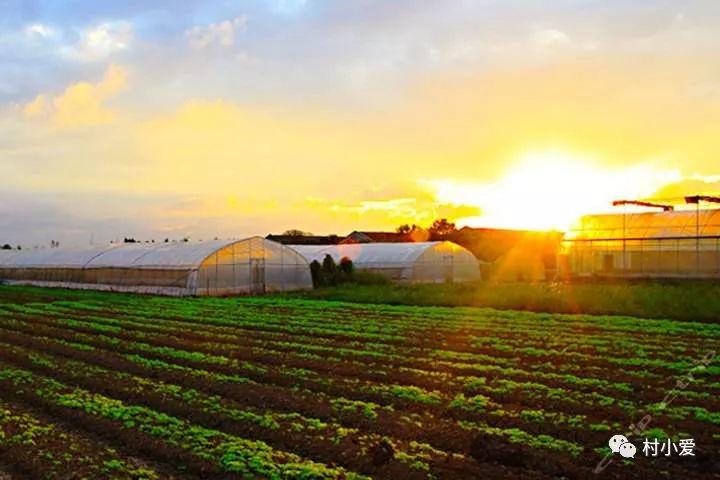 家庭农场景观设计怎样思考?