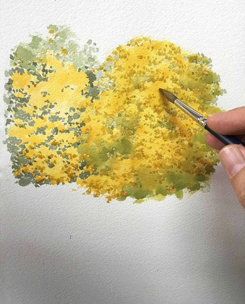 画笔又回到了作为主体的大树上,用深黄色细致地画它的树叶.图片