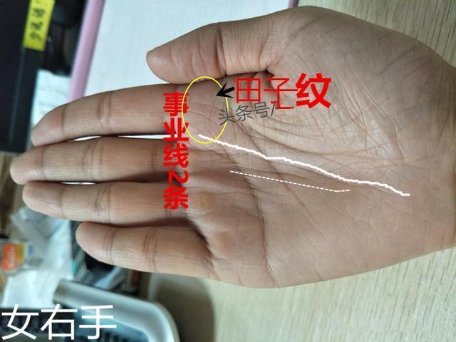 手相:田字纹在手,房车不用愁 - 640x480 - jpeg=>鼠标右键点击图片另存为