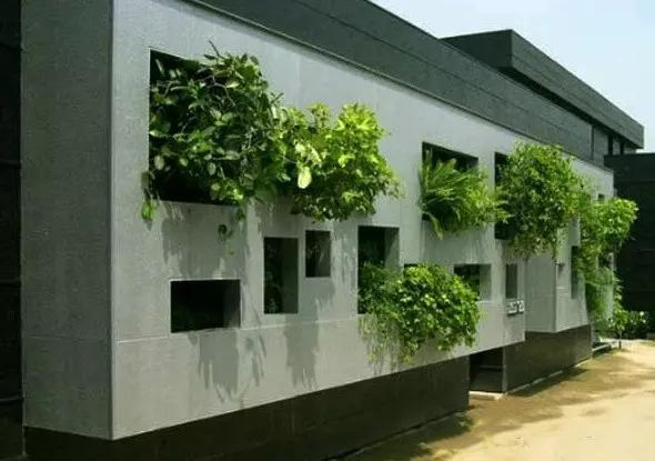 花墙 景观 墙 植物 590_415