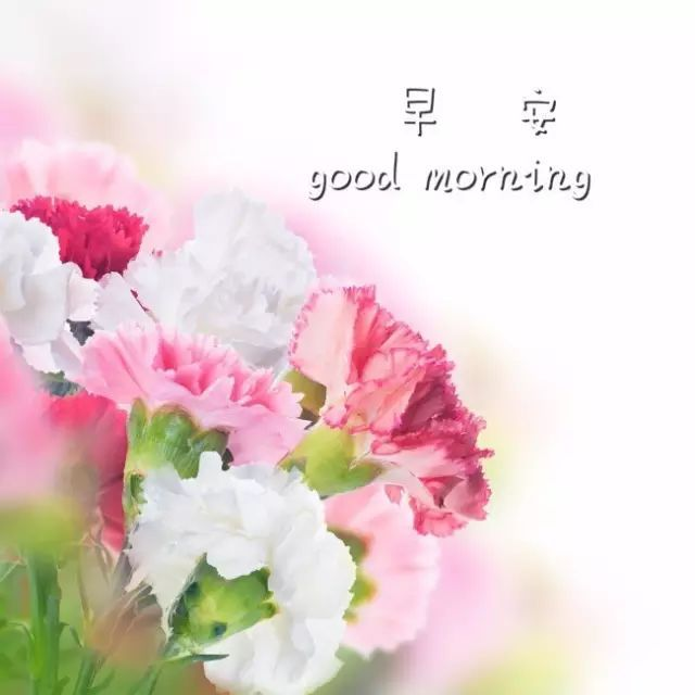 微信早安图片带字 早安精辟唯美句子说说图片