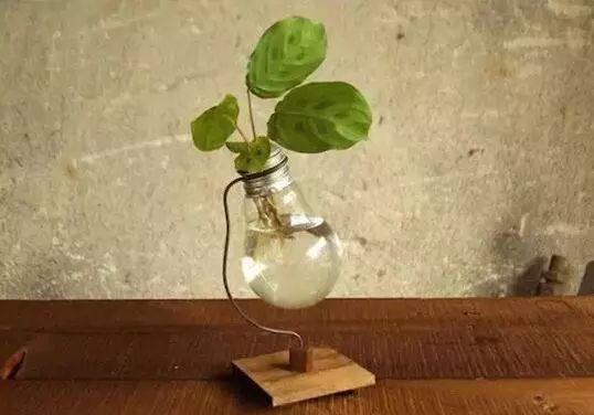 废弃灯泡变废为宝 diy制作可爱的花盆花瓶