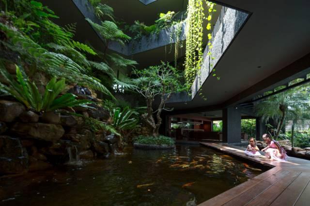 自然的石头堆砌成水池并让水产生生机,水中金鱼自在围绕着树池,像一图片