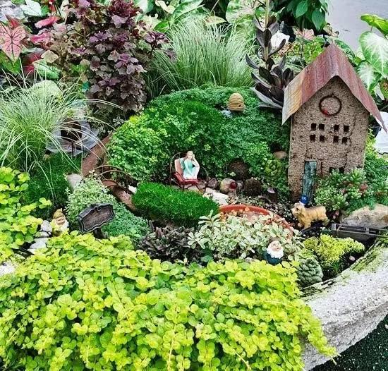 晒晒我家的阳台小花园图片