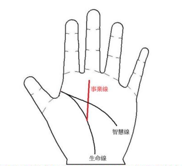 从手掌智慧线看适合你的工作类型  面相手相网