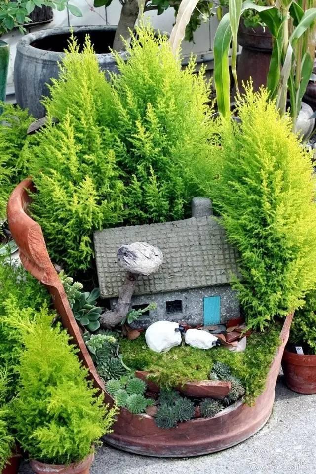 4平米阳台小花园图片