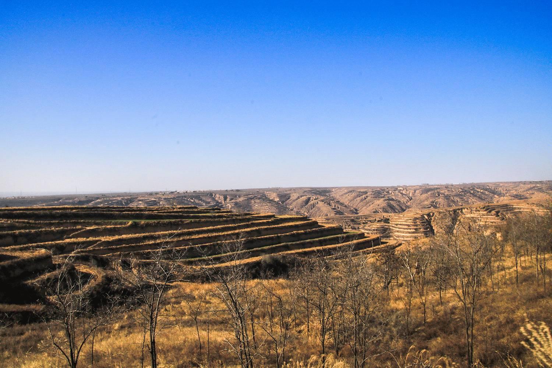黄土高原除了苦难,还有亿万人民的口福