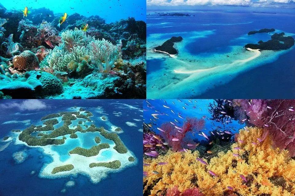 """这个太平洋海岛入境需要承诺""""环保"""""""