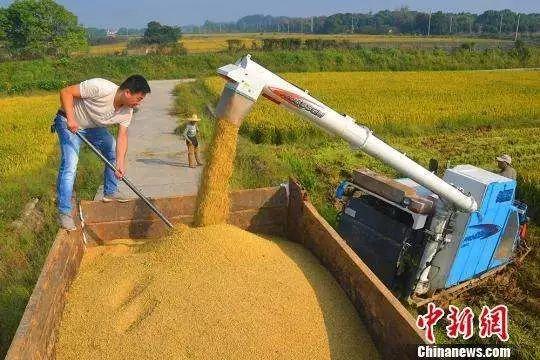 """农业部:明年将推集体产权""""整省整市""""试点涉50个地市鸿天下"""