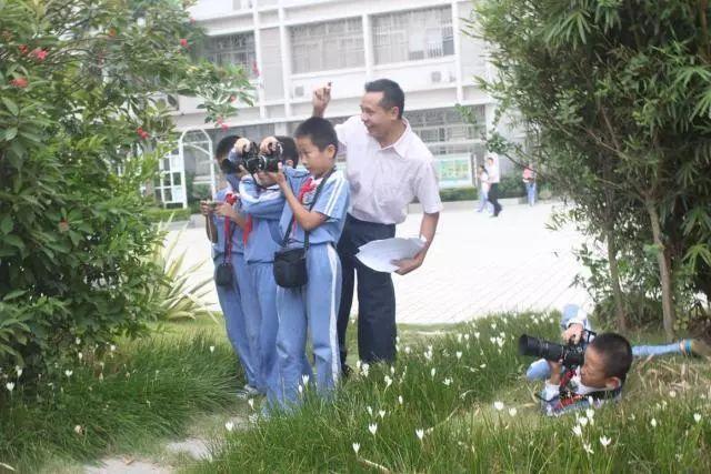 上芬小学:摄影作品又获佳奖图片
