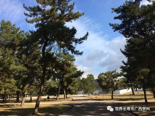 好消息!明年贺州将新增一个市民活动中心,市民有新的休憩好去处了图片