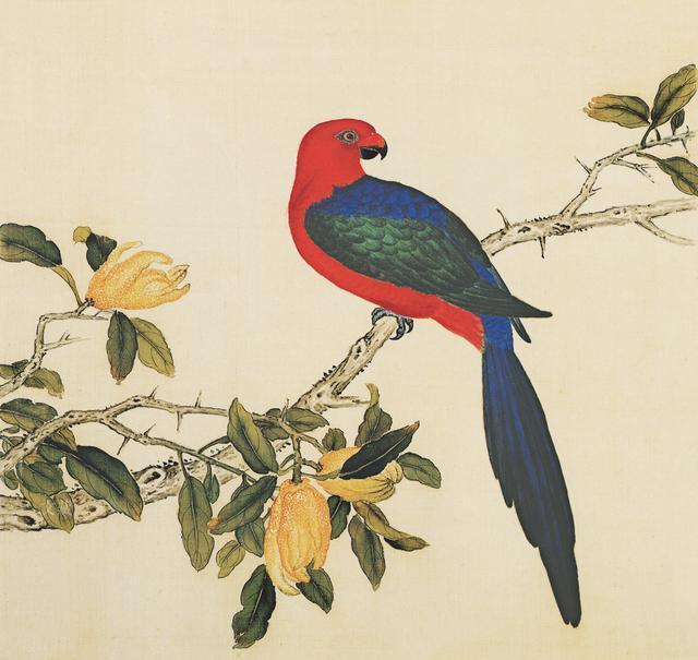 清  余省、 张为邦 《临蒋廷锡鸟谱》 第一册 - h_x_y_123456 - 何晓昱的文化艺术博客