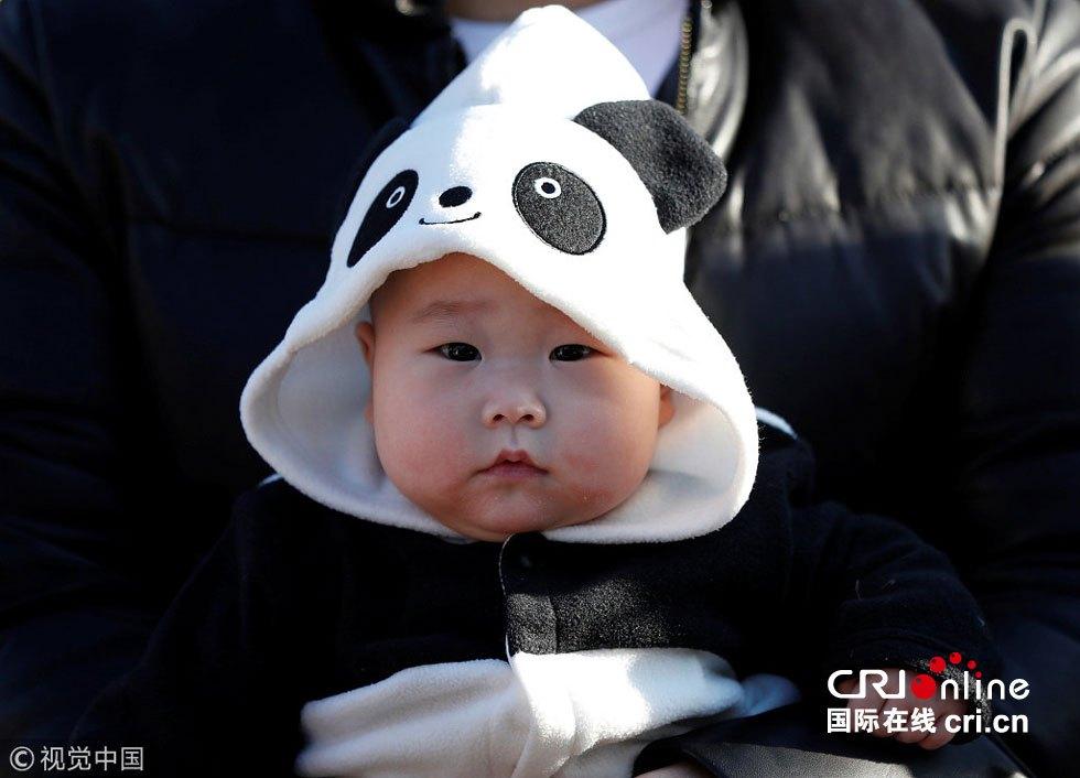 旅日大熊猫香香正式接受参观 游人挤爆动物园 高清组图图片 77808 980x706