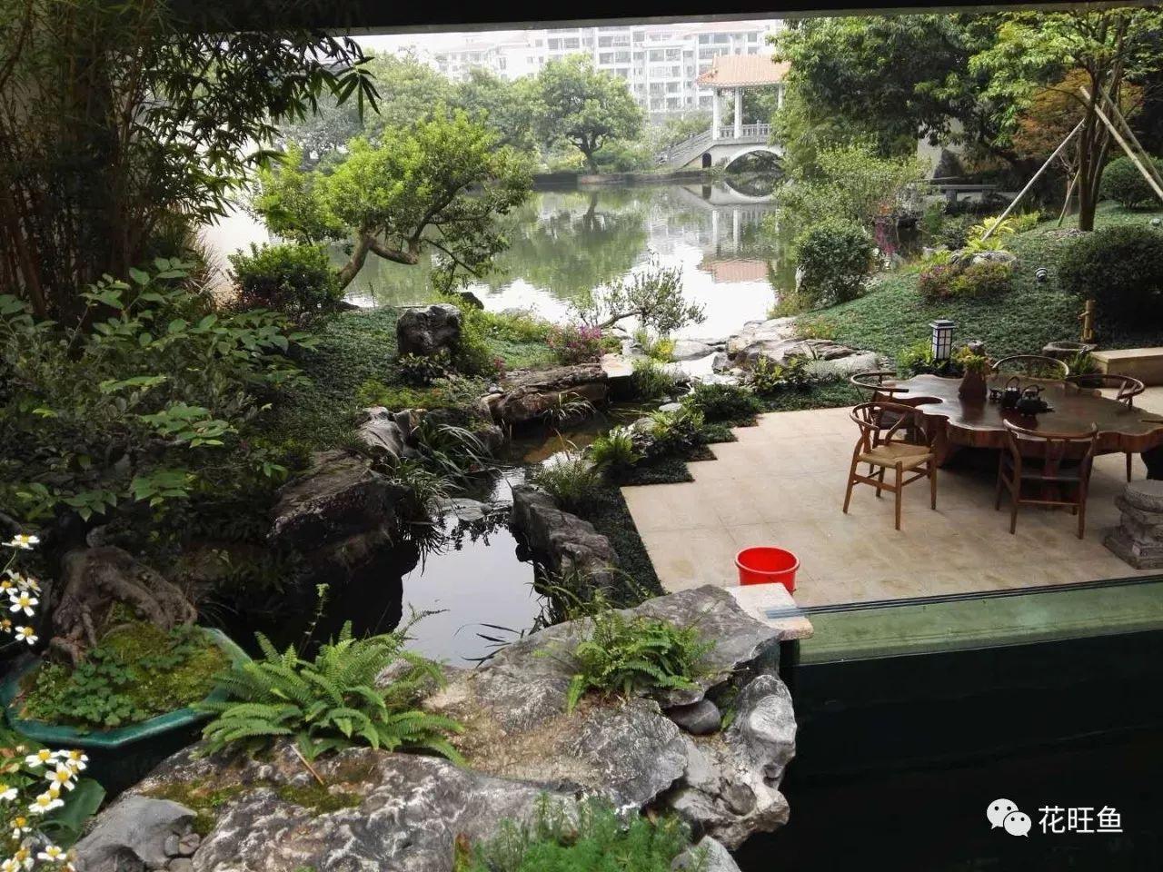 庭院合集:怎么养水才能转运?用5个鱼池花园设计告诉你如何装修