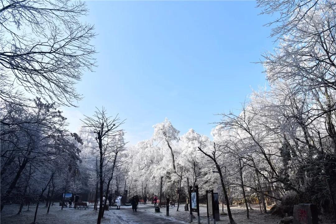 天门山的冬季景色是非常美的,冬季的天门山雾凇犹如漫画世界