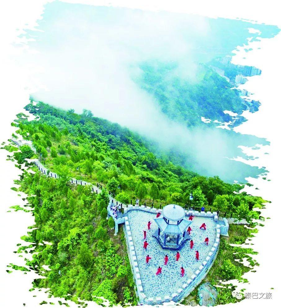 【秦巴文旅】全域规划 激活生态宝藏 白河县生态旅游产业发展纪实