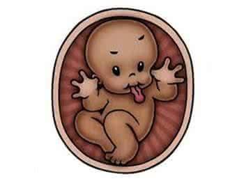 怎么摸胎儿是否入盆_不用做B超也能知道:胎儿的头在哪,脚在哪!