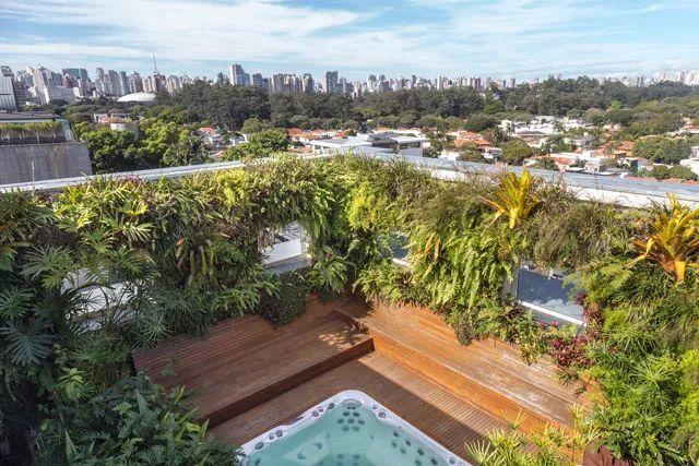 巴西100%垂直墙面绿化的屋顶花园景观图片