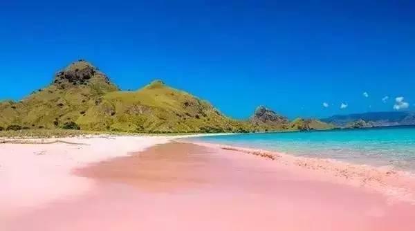寻觅美丽粉红沙滩—巴厘岛&科莫多岛(2018年2月5日—10日)