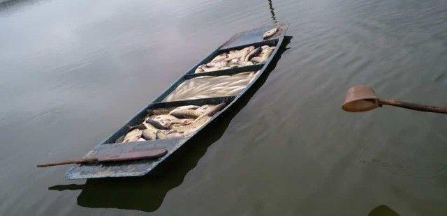 养殖龙虾喂死鱼可以吗_水没养好开始死鱼了怎么办_为什么养鱼设备都全还是死鱼
