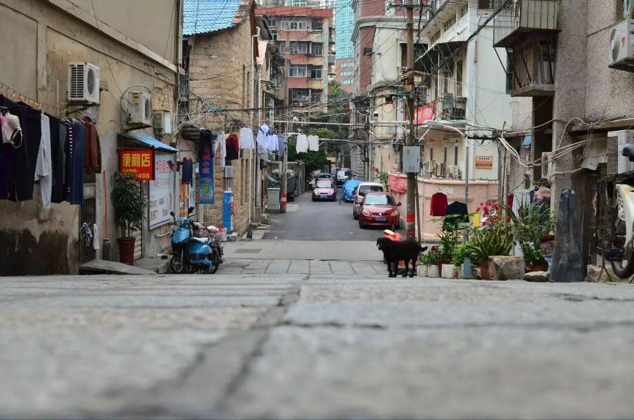 百家村、华新路、筼筜路…厦门这些小众的步道,美翻了!冬天遛娃、发呆、看风景超舒服~