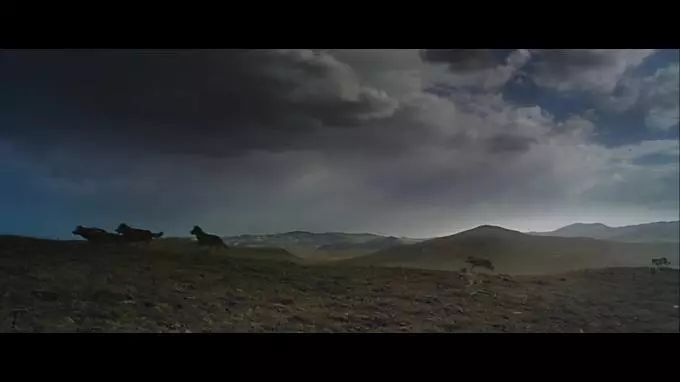 图解|《狼图腾》让人不想看第二遍的好作品