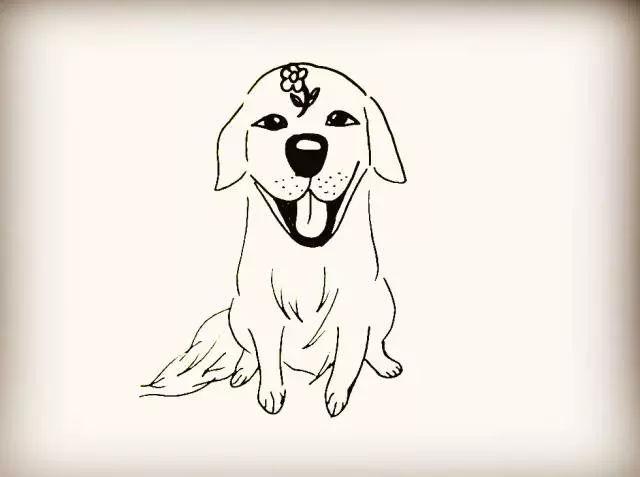 师讯网推荐——幼儿园简笔画教程:动物系列