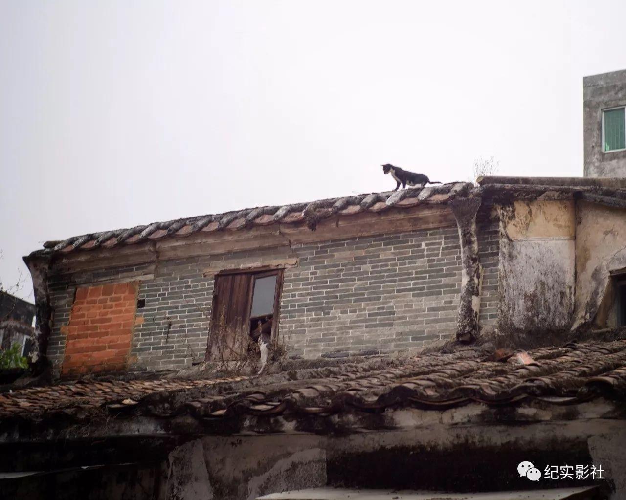 阳江市有多少人口_阳江市有多少人口(2)