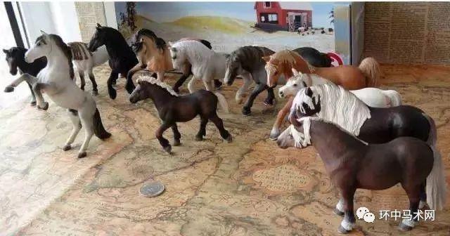 【百科】马的品种