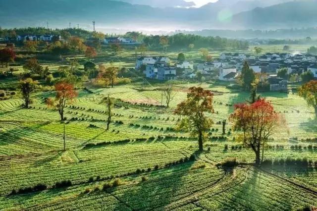 十座蓝城小镇,见证美丽中国