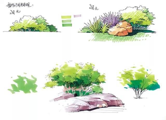 园林景观手绘马克笔色彩表现,简单易学