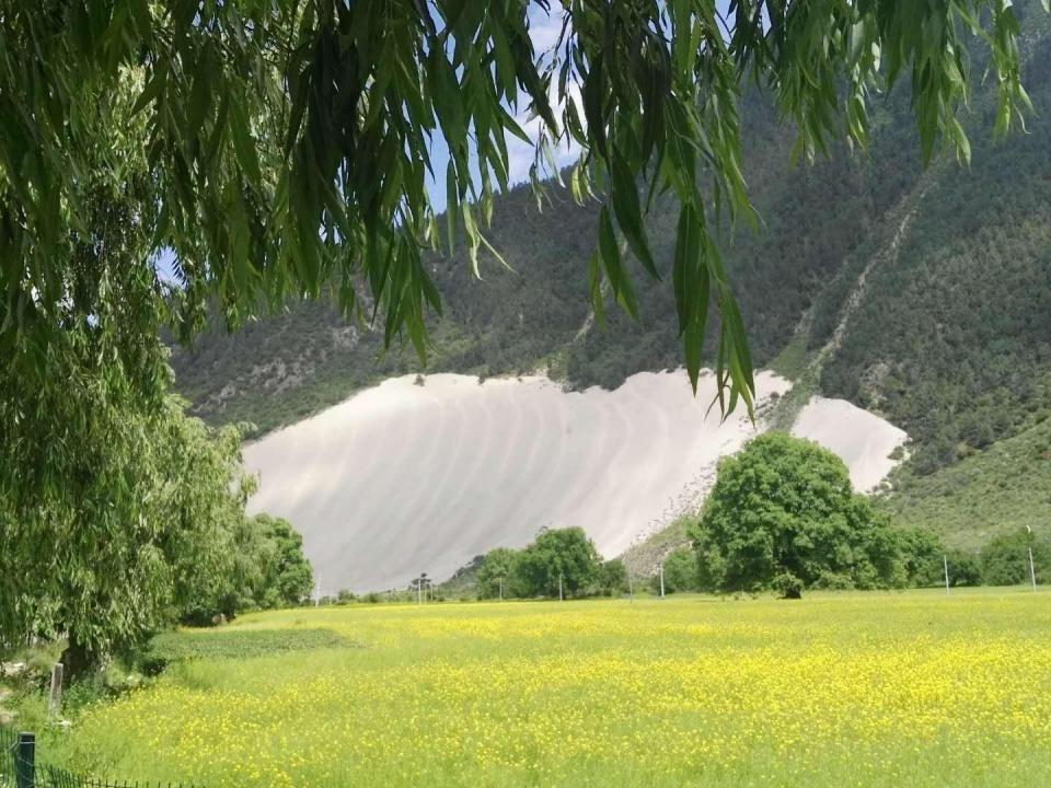 米林县卧龙镇_旅途新发现 西藏米林竟有如此佛系沙丘【跨年】