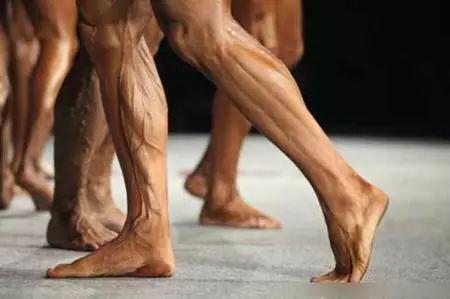 腿部肌肉养长|从练腿开始!