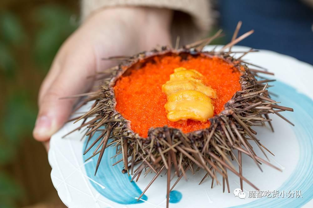 用的是北海道的价格籽和朝一的飞鱼.龙吐珠鱼鸡蛋图片